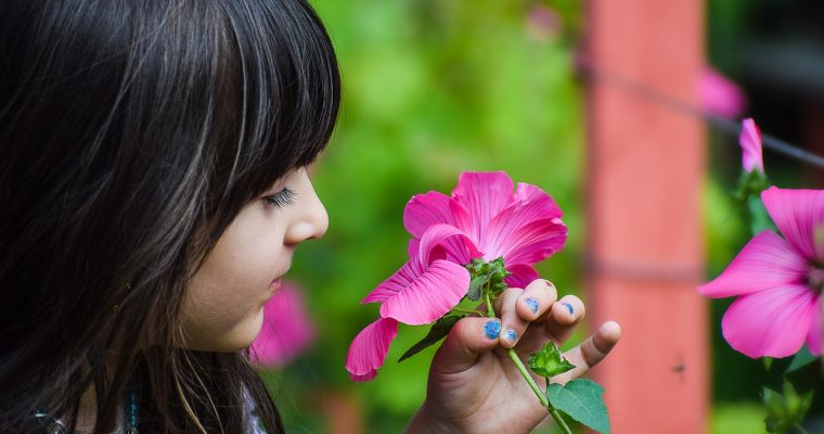 Caring for a Child With Asthma